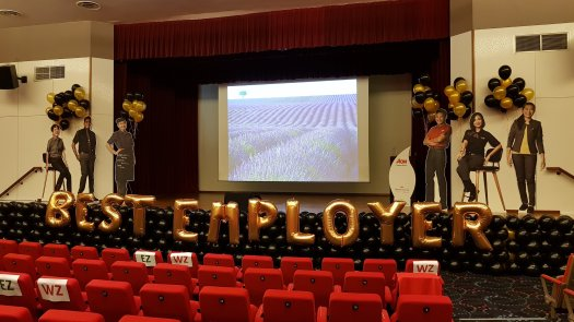 Stage Balloon Decorations For Mcdonalds Award Ceremony Singapore